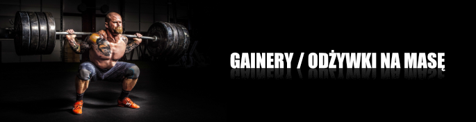 Gainery na masę Scitec Nutrition